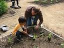 Rose & Flower Garden Planting Is A Success!
