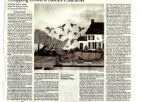 New York Times Report on the Dwindling of City Street Trees in America (3-6-19)