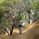 Bahia Trail Hike, Novato 10/16/14