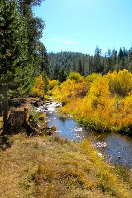 Sagehen Creek October 12, 2016